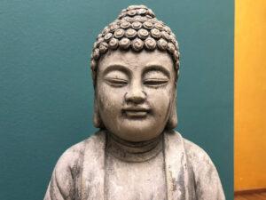 omscandi-buddha-yogalehrer-ausbildung-coolyoga
