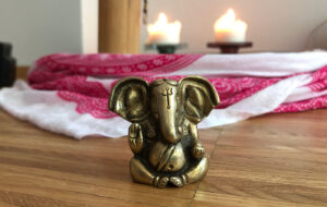 omscandi-yogalehrer-ausbildung-ganesha-coolyoga